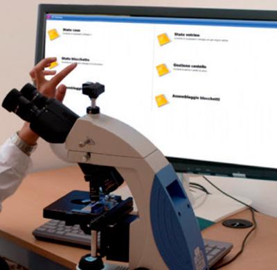 El software AP Itineris cubre todos los procesos del laboratorio de anatomía patológica
